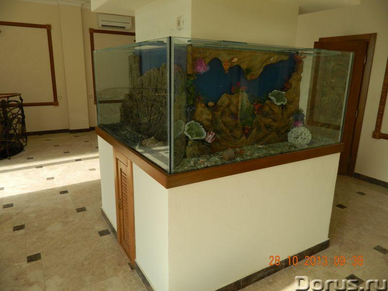 Интернет магазин аквариумов товаров АКВАТОРИЯ - Товары для животных - Наша компания занимается изгот..., фото 1