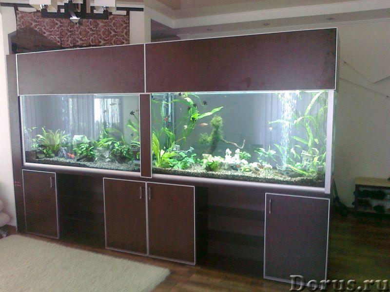 Интернет магазин аквариумов товаров АКВАТОРИЯ - Товары для животных - Наша компания занимается изгот..., фото 2